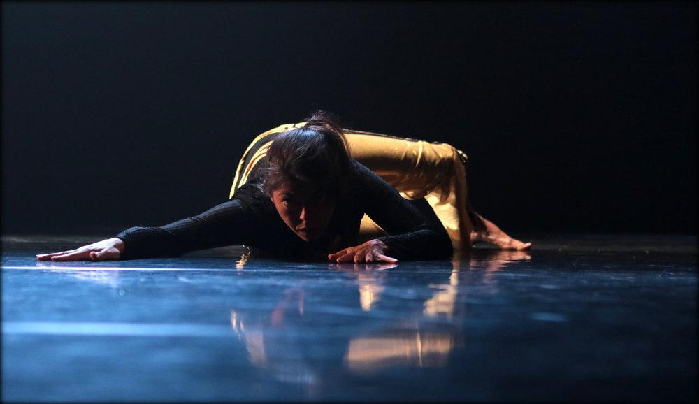 Plesišče, PTL, Festival Ukrep, Foto Sunčan Stone (14).JPG