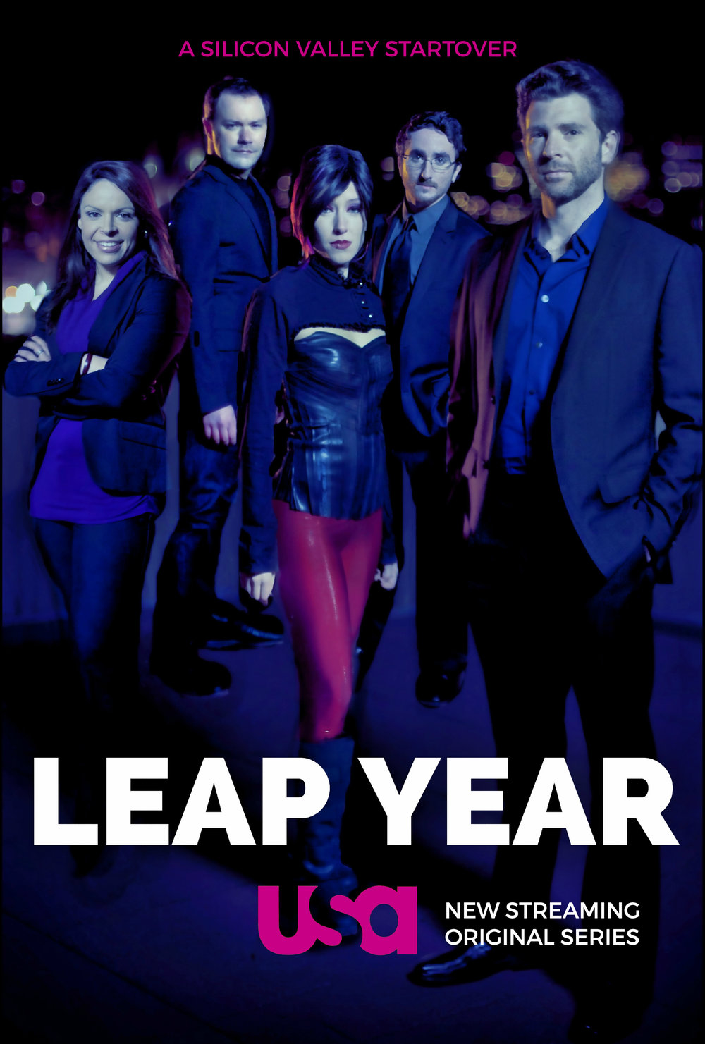 LEAP YEAR-silicon valley poster-imdb.jpg