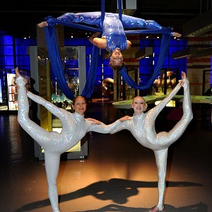 Aerial silks ensemble