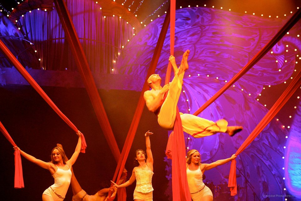This picture shows Lilli in the aerial silks ensemble show at an Indian Wedding