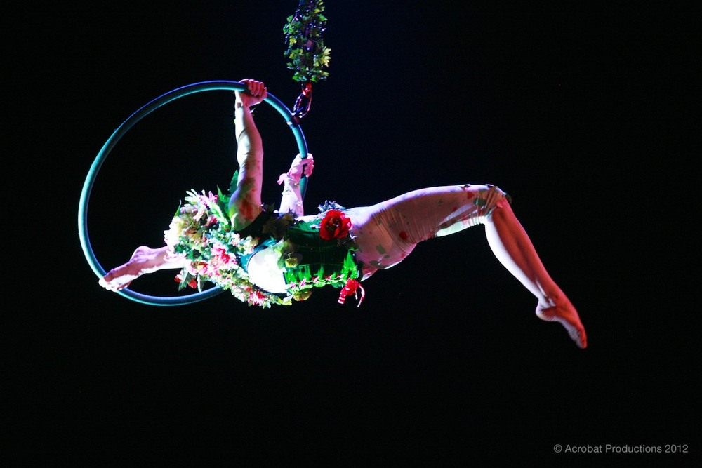 Lilli hoop artist