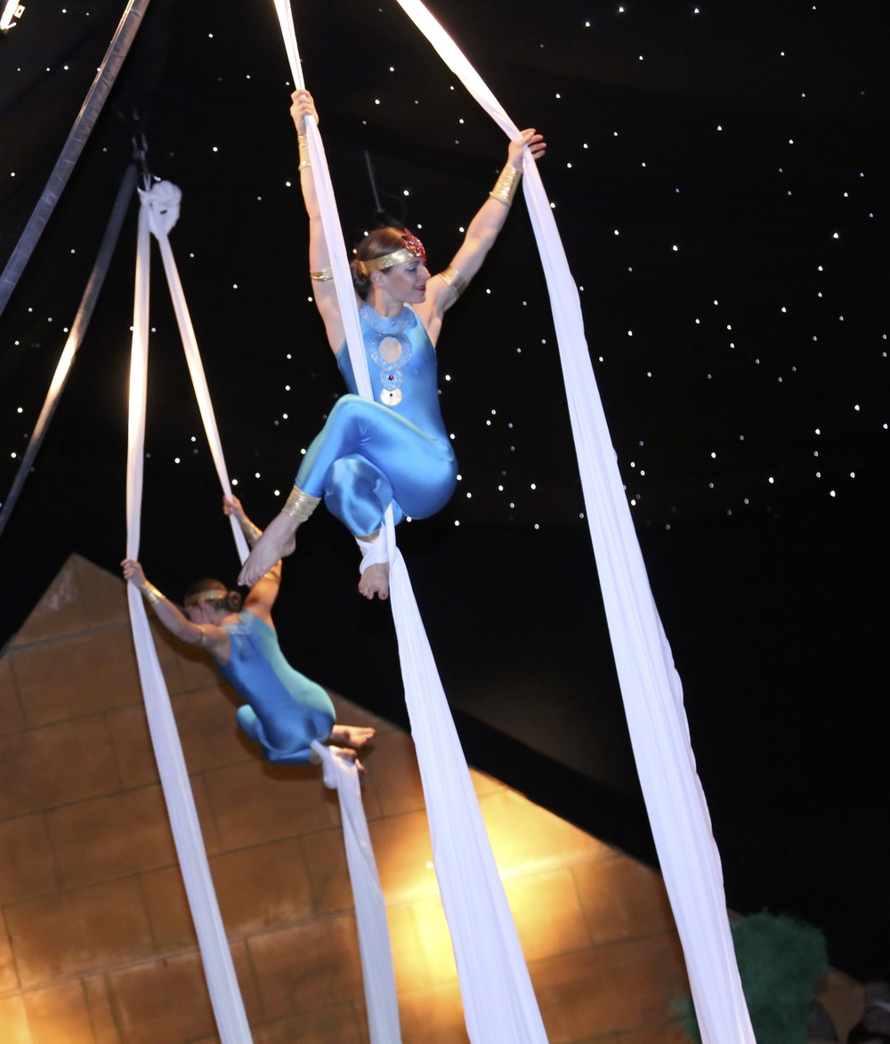 Aerial Silks Christmas Performance.JPG