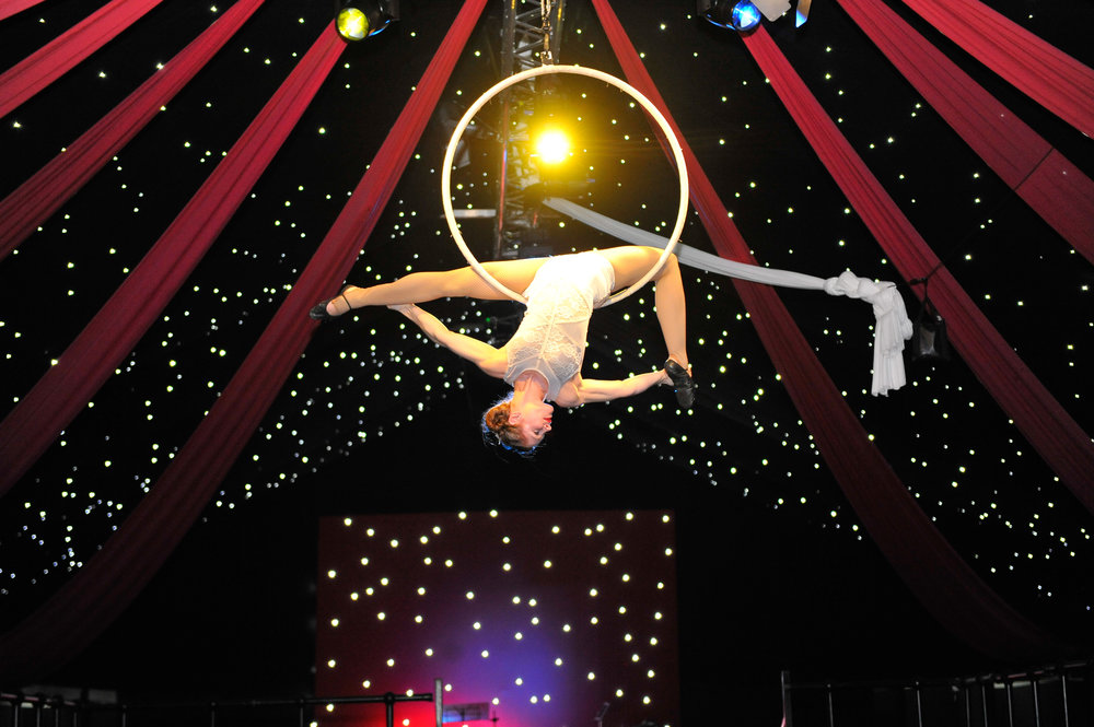 Aerial Hoop Entertainment for Events