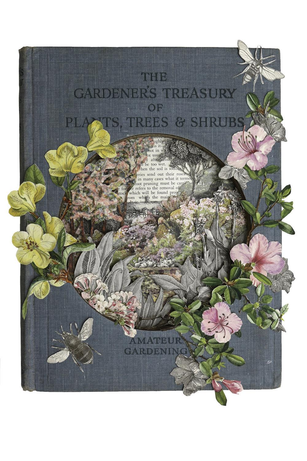 The Gardener's Treasury of Plants, Trees & Shrubs.jpg