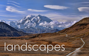 LandscapesText.jpg