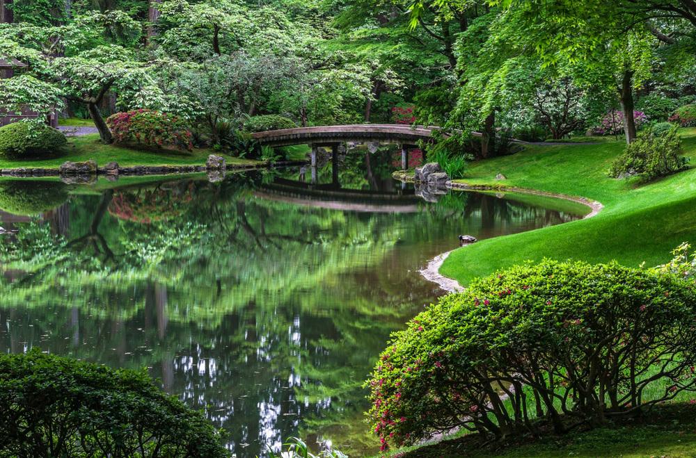 Garden_01.jpg