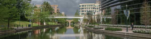 The Woodlands.001-2.jpg
