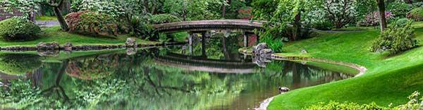 photographing-public-gardens.jpeg