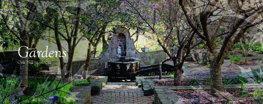 gardens_2.jpg