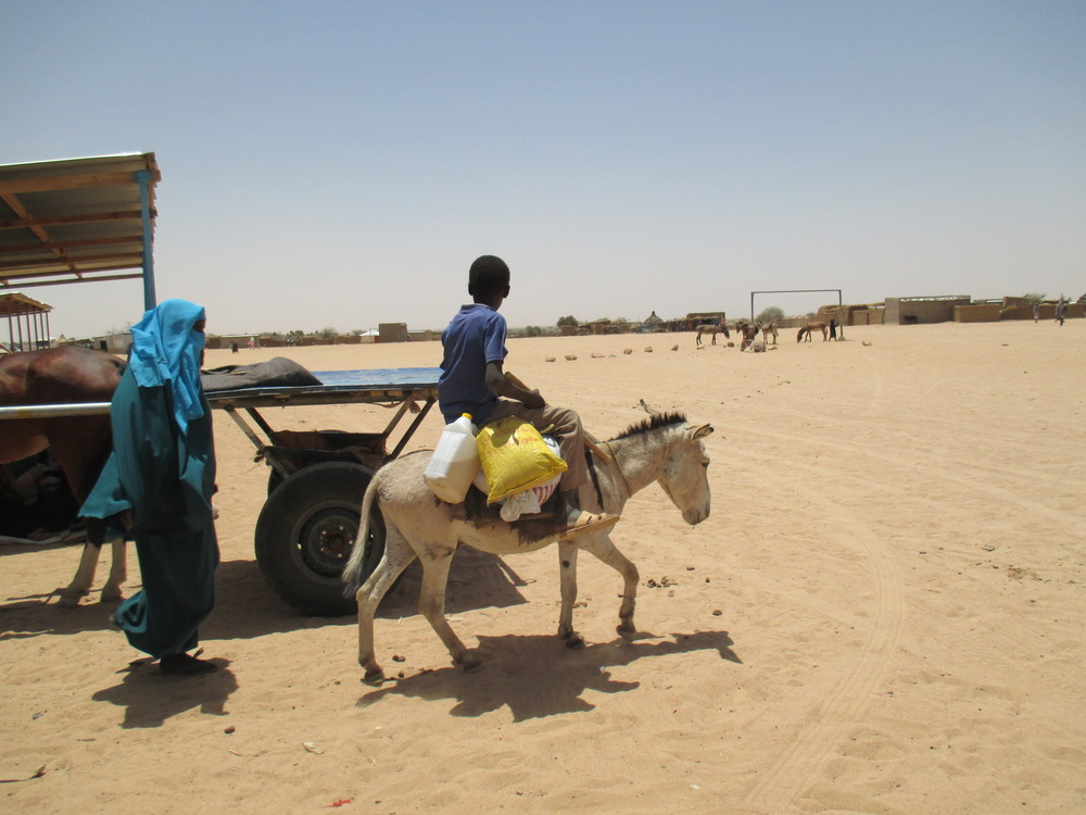 A boy and his donkey carry supplies, including cooking oil, on food distribution day in Am'Nabak camp.