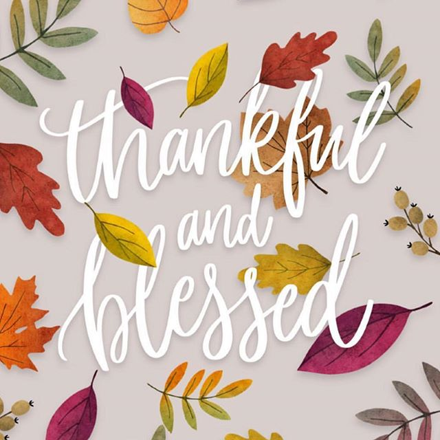 It is our prayer today that you realize how blessed you are, and that you are thankful!  We will see you this weekend at church!  Enjoy your day with family and HAPPY THANKSGIVING!! #thanksgivinghappy #grassrootsyouthmovement #turkey🦃