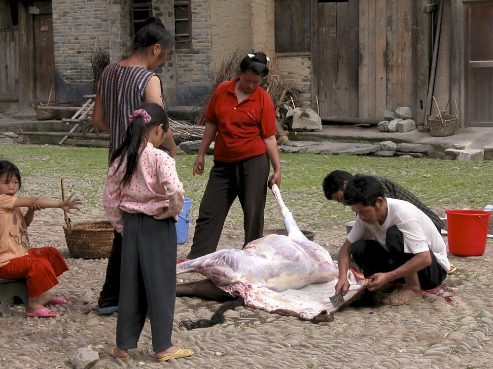 Guizhou street butchery