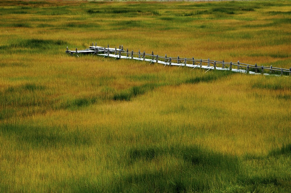 Yunnan grassland with wooden trail