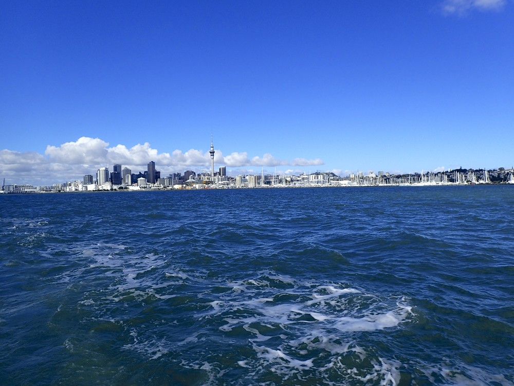 View on Auckland from the harbor.