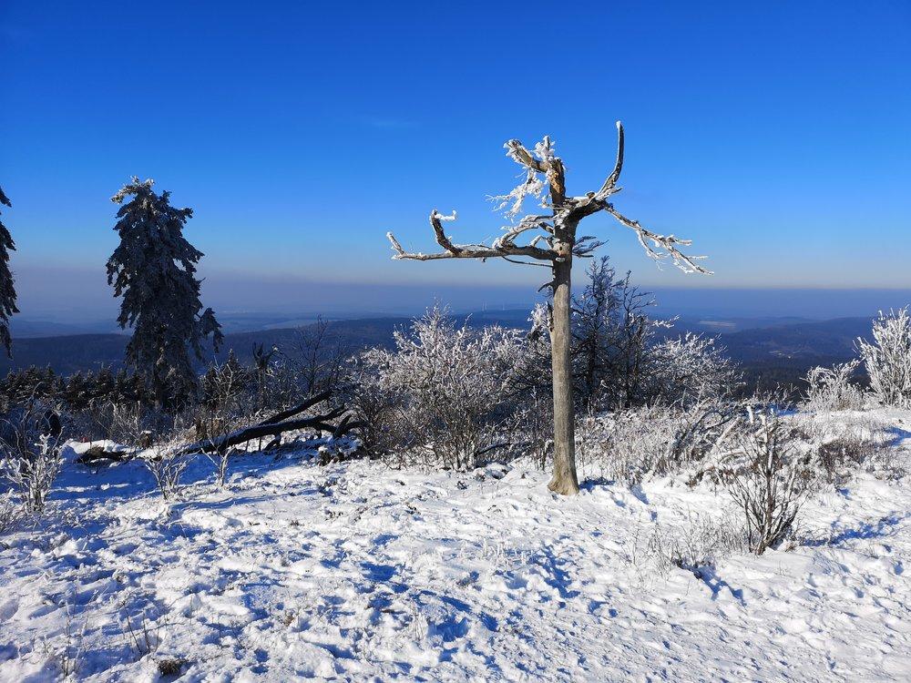 View from Grosser Feldberg into Taunus