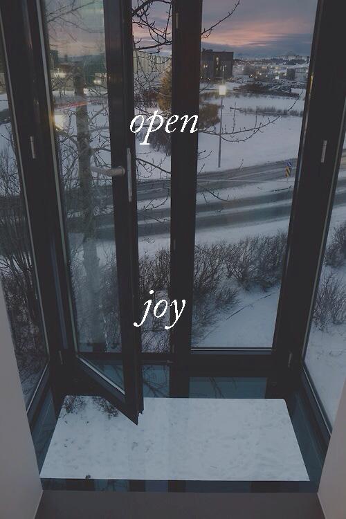 openjoy.jpg