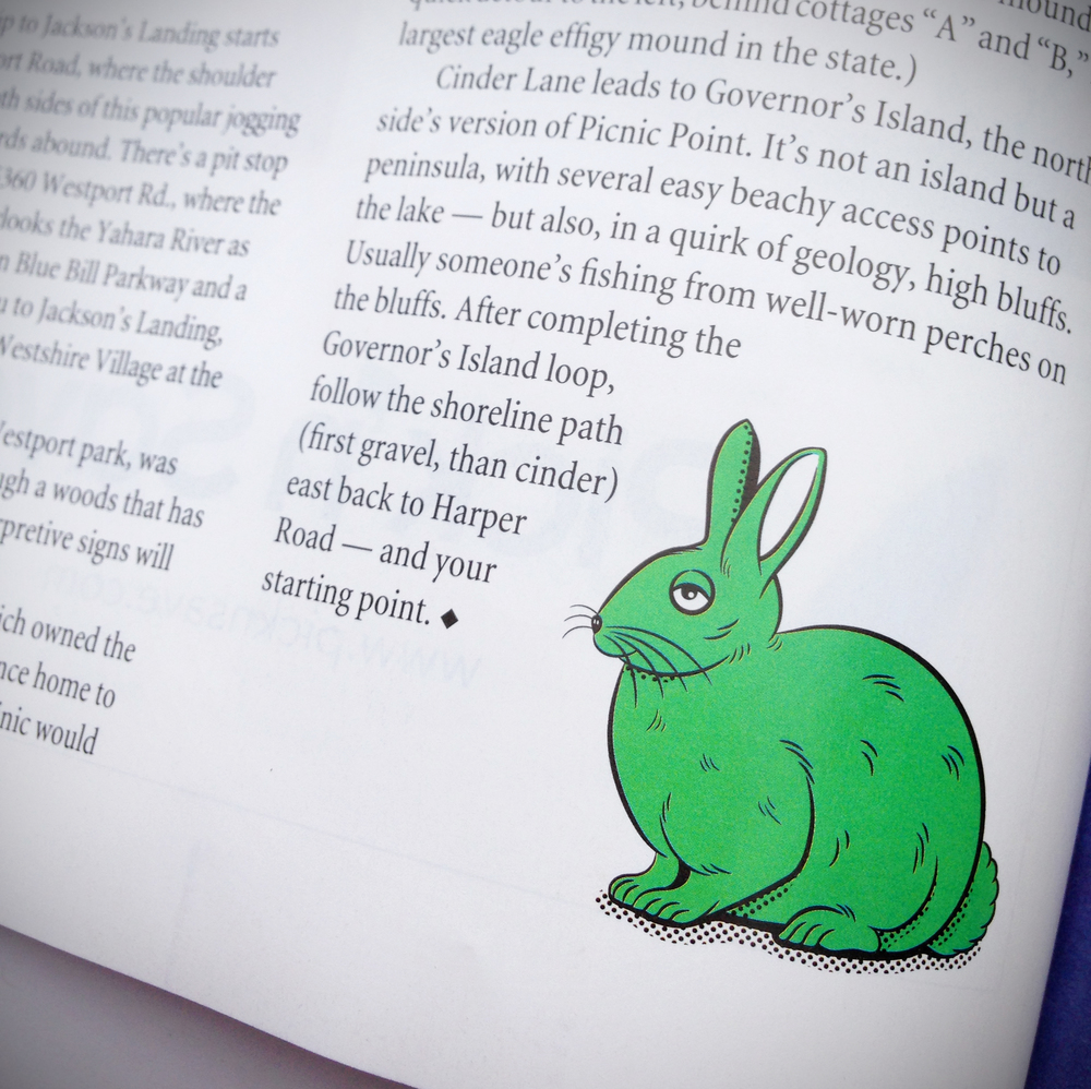 Annual_Manual_rabbit_illo_photo.jpg