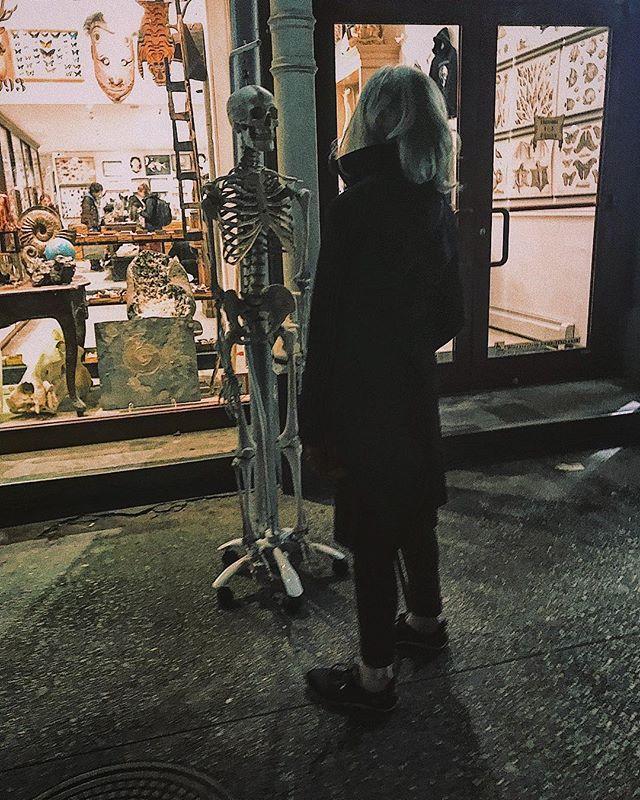 Something something something mortality. ___________ ___________ ___________ #skeleton #remains #corpse #bones #bonezone #boner #nyc #gotham #skeletonwar