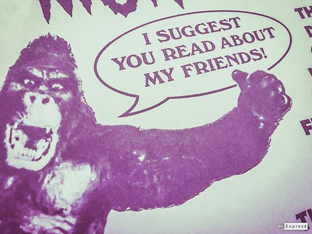 My name is Chris and I endorse all of you. • • •  #gorilla #guerilla #nonewfriends #friends
