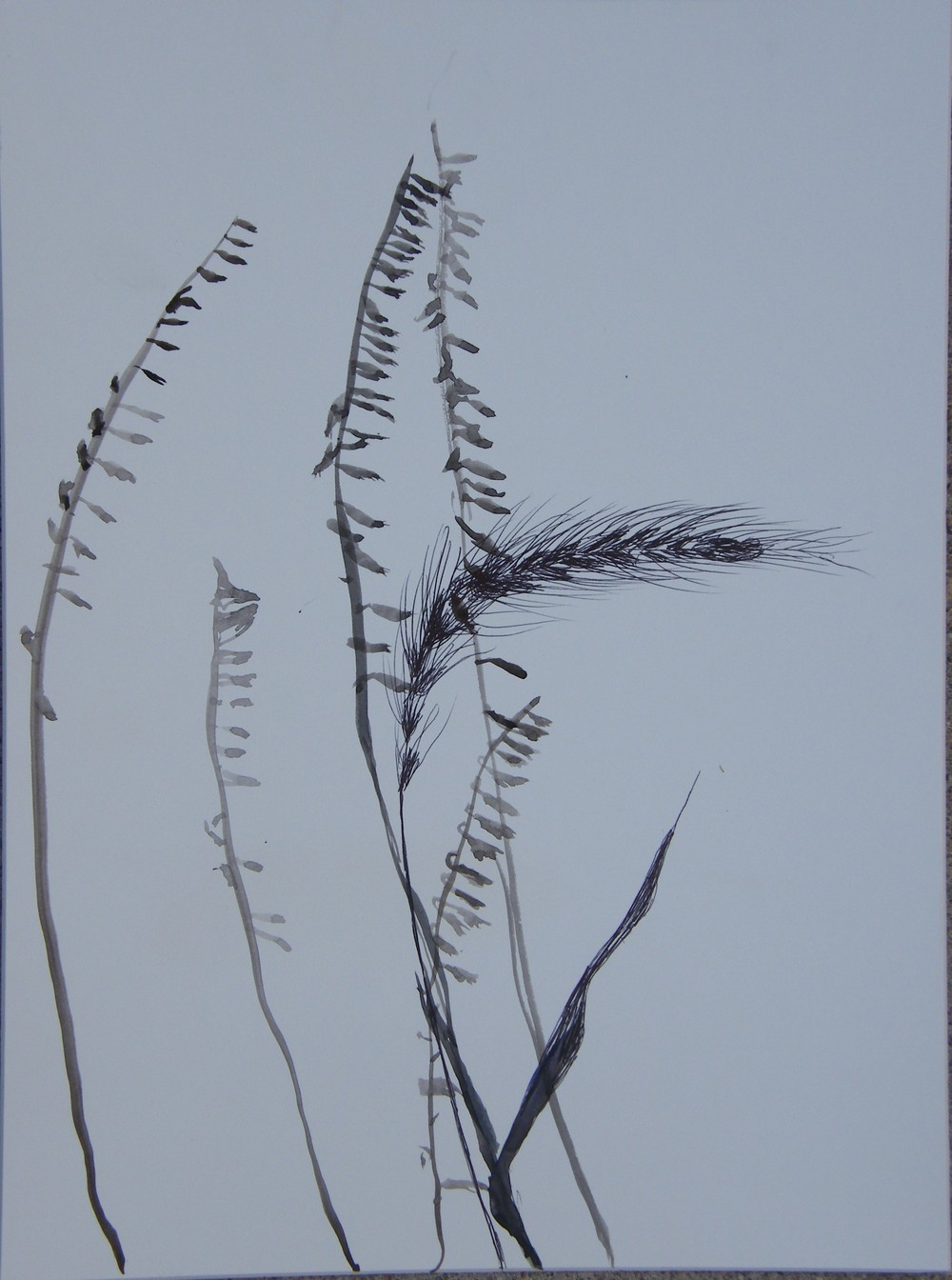 Silhouette painting/drawing, restored prairie