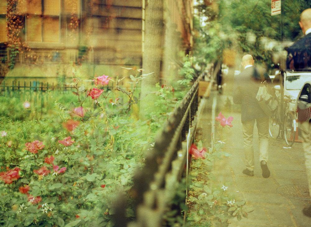 Cinestill - Fomapan - Rollei CR200-21.jpg