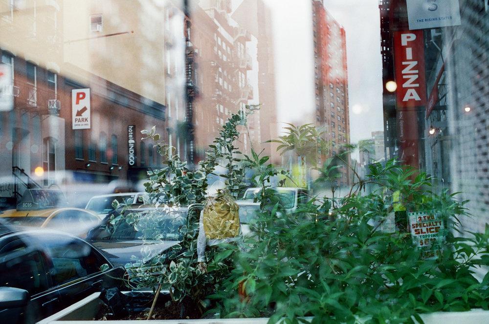 Cinestill - Fomapan - Rollei CR200-60.jpg