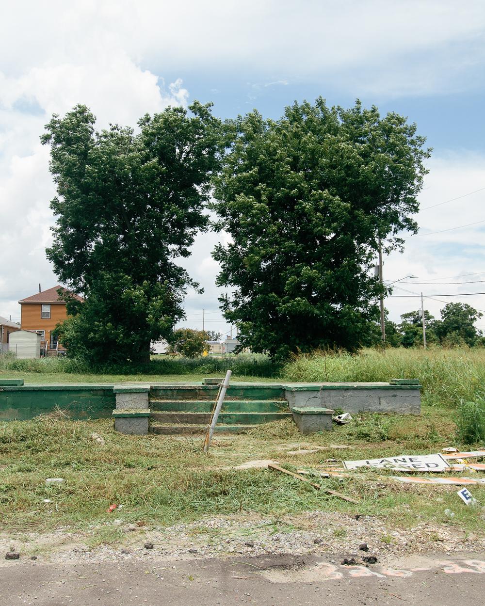 MiamiSF-6.jpg