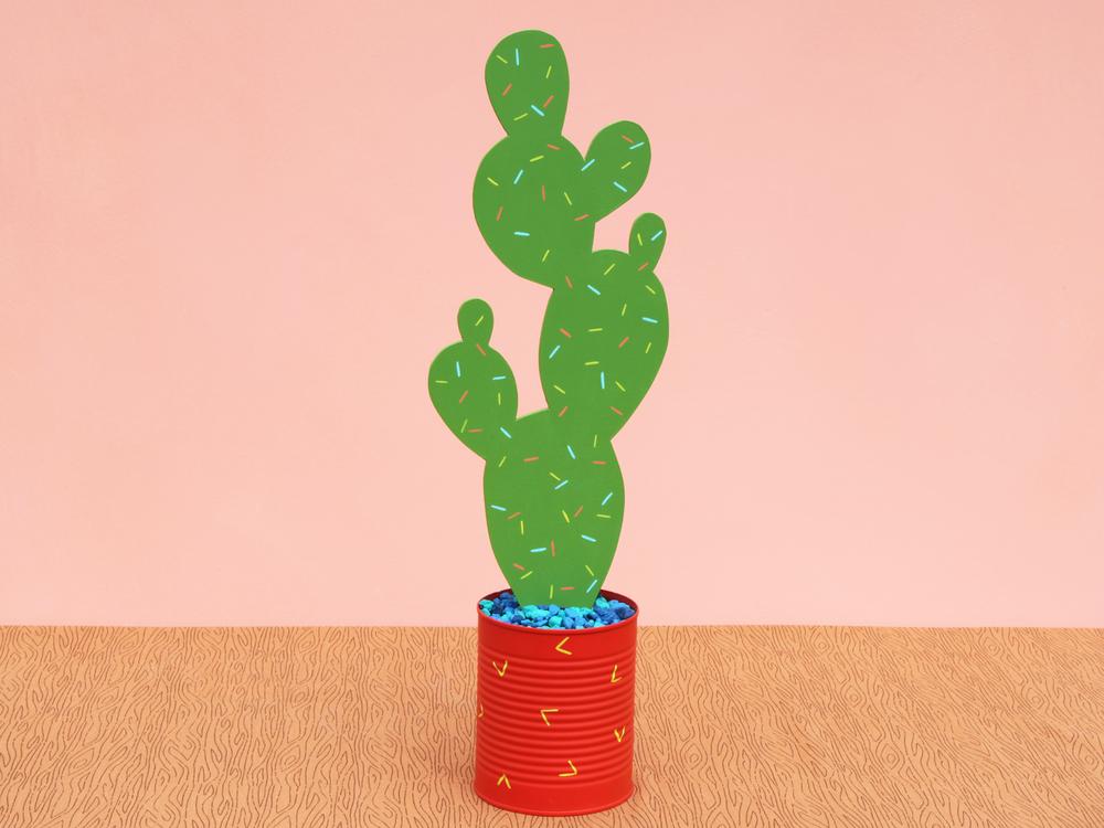 cactiD_back.png