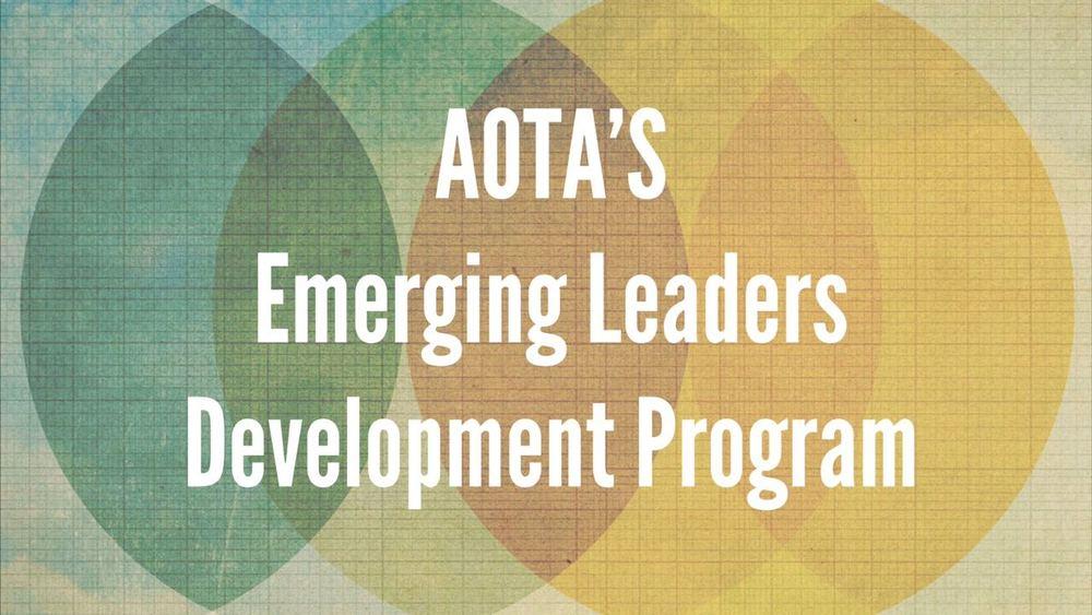 AOTA's emerging leaders development program