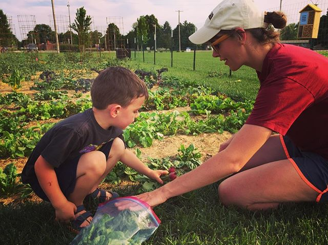 Ok. Sometimes he steps on plants. Sometimes he pulls veggies instead of weeds. Sometimes his close-ranging drenching of plants with the hose makes us cringe. But, overall I am so proud of this little gardening trooper and everything we are both learning in our community garden! #communitygarden #nebraska #foodnotlawns #auroragardenclub