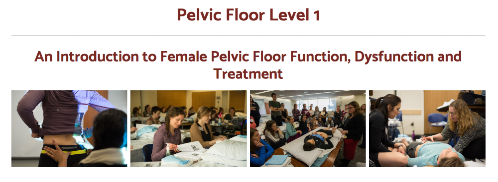 Pelvic Floor 1 through Herman and Wallace