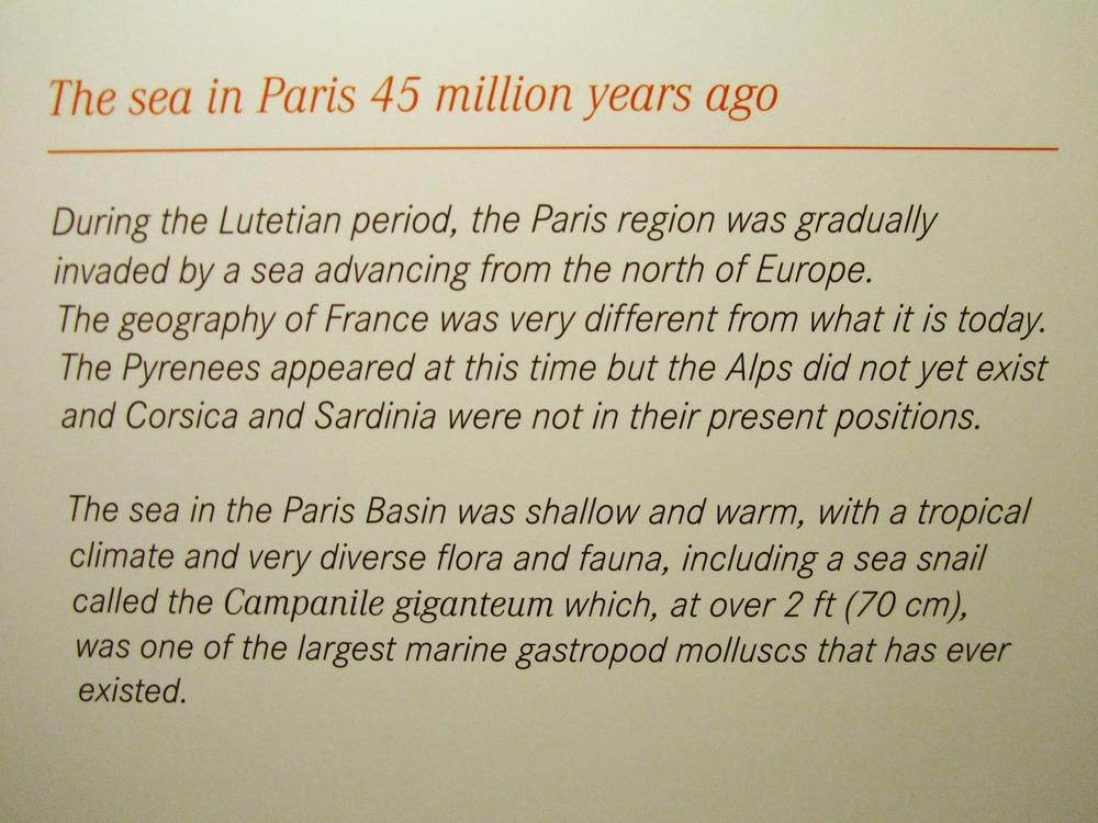 paris catacombs Lutetian period info.JPG