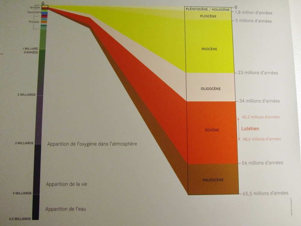 paris catacombs time chart.JPG