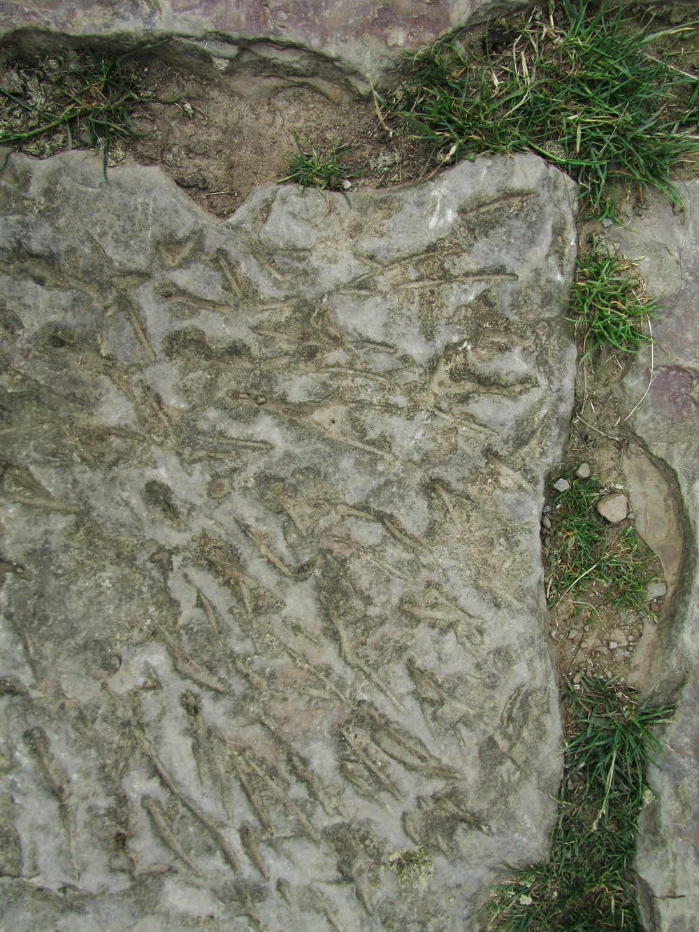 castleton paving slabs.JPG