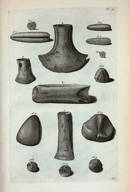 """Thunderstones"" Pre-historic axe-heads and arrowheads, once thought to be  fossilised thunderbolts!"