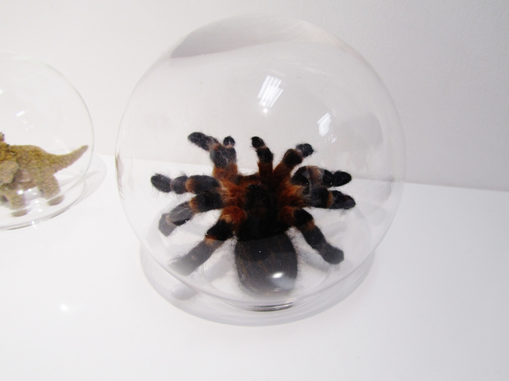 The patience and skill of hand needle felting is the perfect way to capture the colours and the textures of a spider's hairs giving this super little tarantula a lifelike appearance.