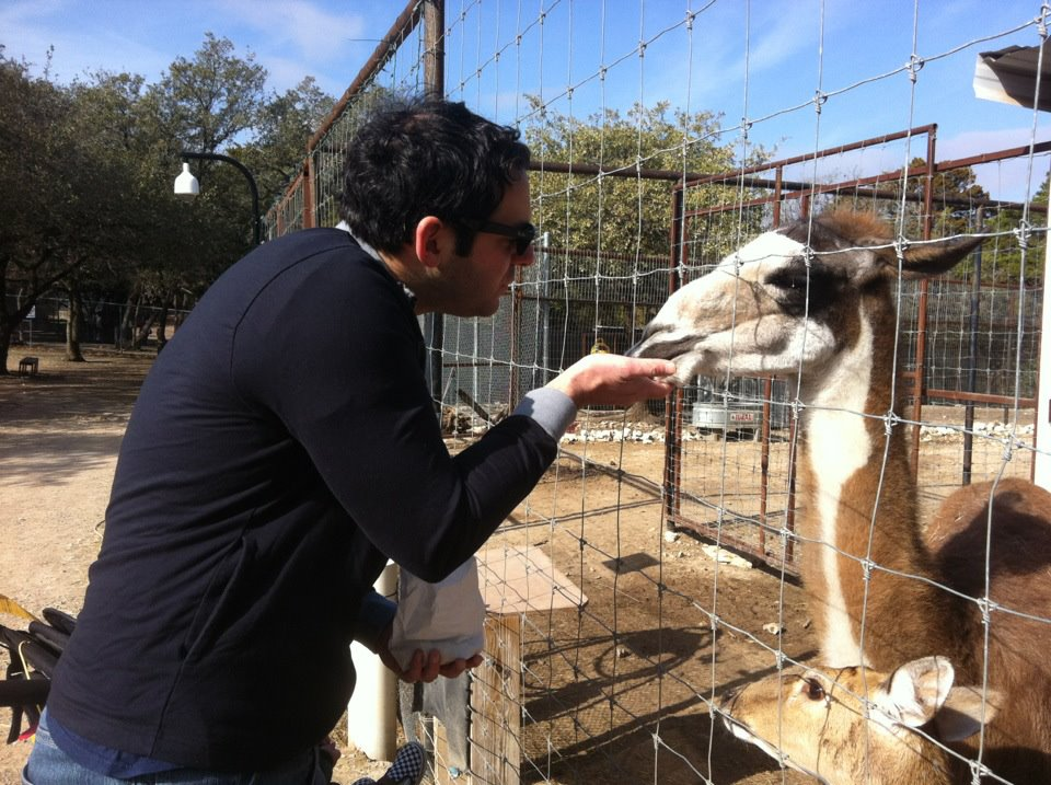 Dude feeds animal and looks lame doing it.