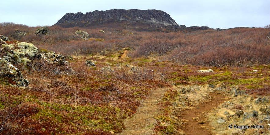 a-hike-to-the-perfectly-shaped-eldborg-scoria-crater-on-snaefellsnes-in-west-iceland-2.jpg