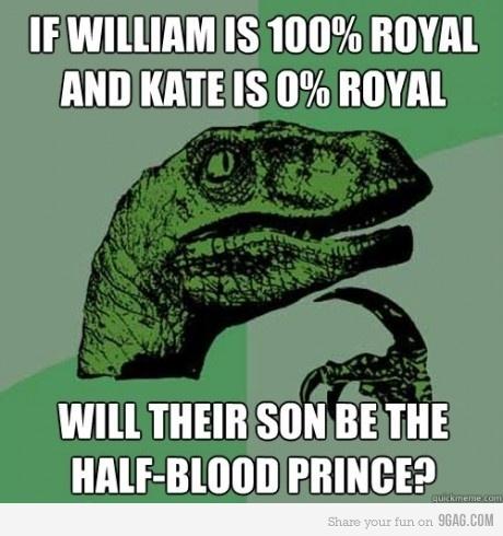 funny-quote-half-blood-prince-half-blood-prince-harry-potter-hogwarts-Favim.com-269313.jpg