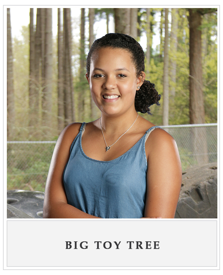 Big Toy Tree.jpg