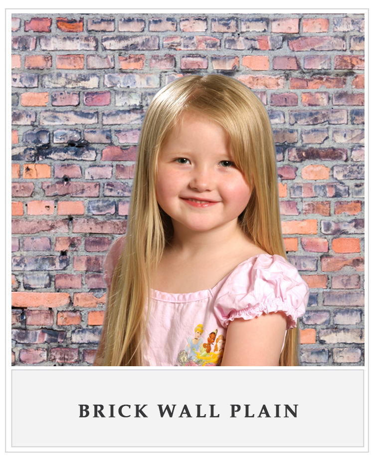 Brick Wall plain.jpg