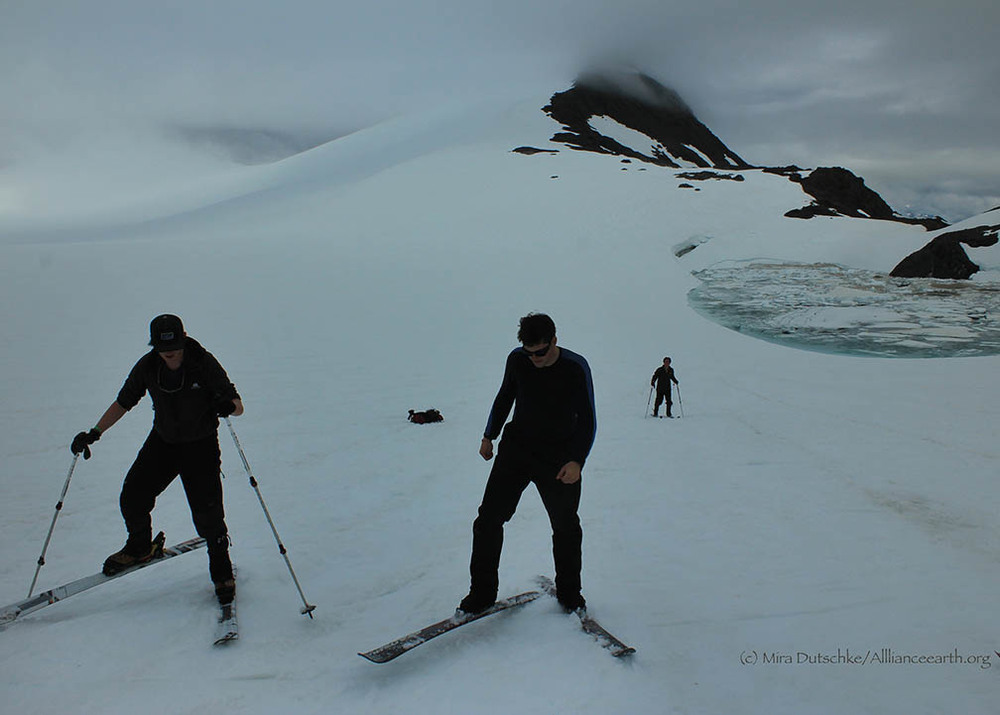 Matt Pickart and Alistair Morgan practice their skiing skills on the upper Lemon Creek Glacier with Lake Linda and Observation Peak in the background.  Photo:  Mira Dutschke