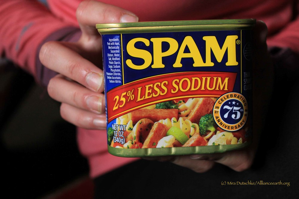 Raw spam anyone?  Photo by Mira Dutschke