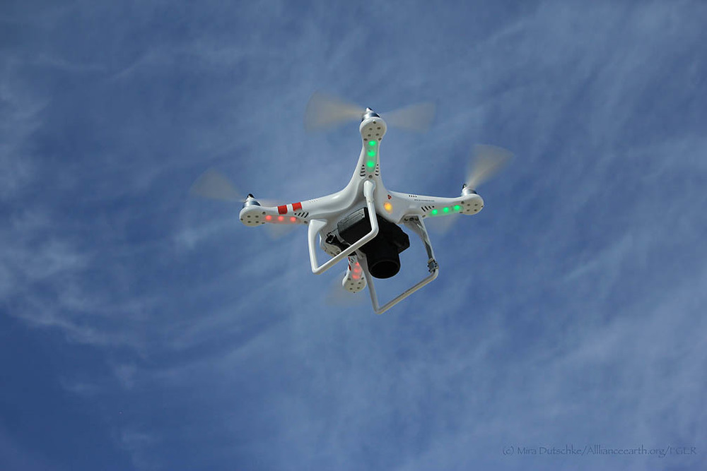 Quadcopter in flight.  Photo by Mira Dutschke.