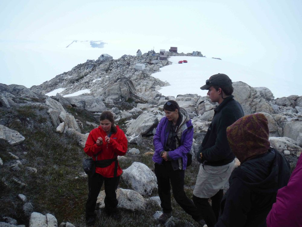 "Dr. Polly Bass talking with JIRP students, Mira Dutschke, William Jenkins amongst others, about glandular tipped hairs of Phyllodoce aleuctica, ssp. glanduliflora (Yellow Mountain Heather) on the ""Taku B"" nunatak above Camp 10. Photo by Sarah Bouckoms"