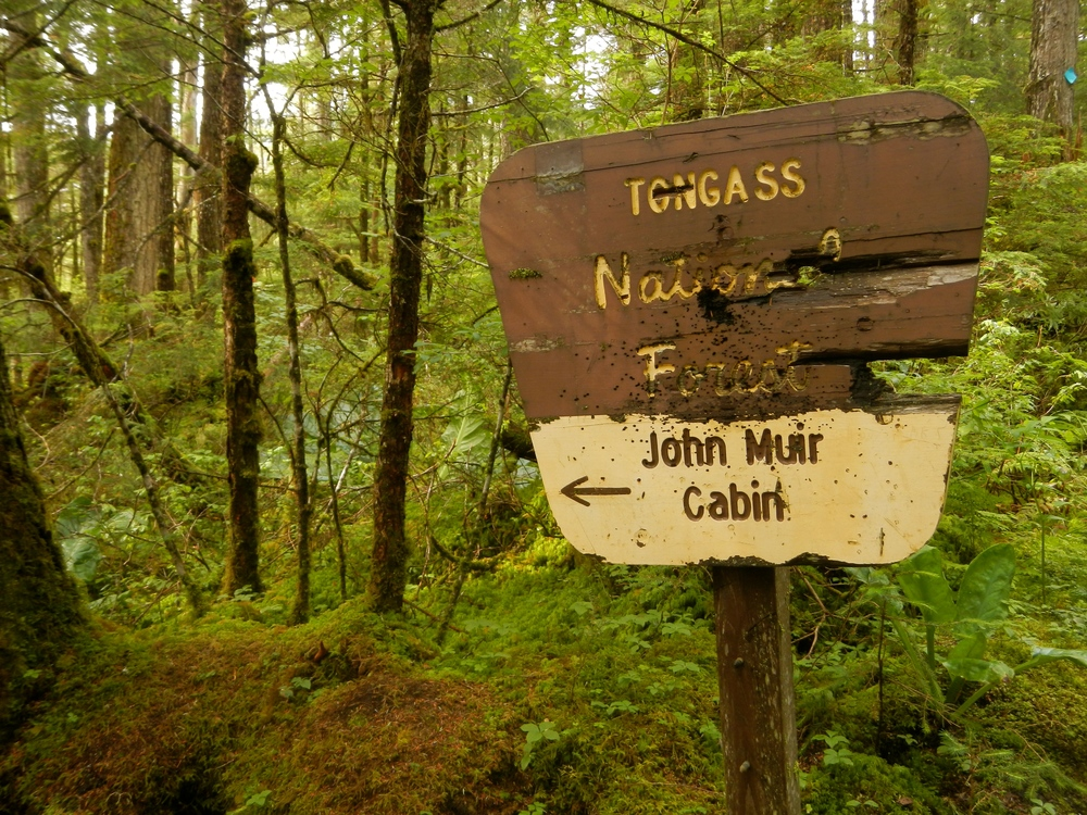 One final hike to John Muir's Cabin.  Photo by Natalie Raia
