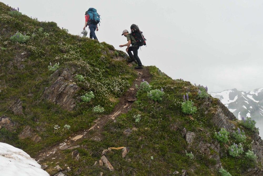 Drs. Catharine White and Jeremy Littell hike back to Camp 17 along Blackerby Ridge during the 'Blackerby Ridge Botany Bonanza'. Photo courtesy of Matt Beedle.