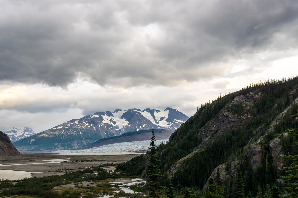 A final view of the terminus of the Llewellyn Glacier from the trail to Atlin Lake. The traverse section from Camp 26 to Atlin goes through exceptionally beautiful terrain, and includes several things many JIRP students won't have seen in six weeks: trees, mud, bears, and large bodies of liquid water. Photo: Daniel Otto.