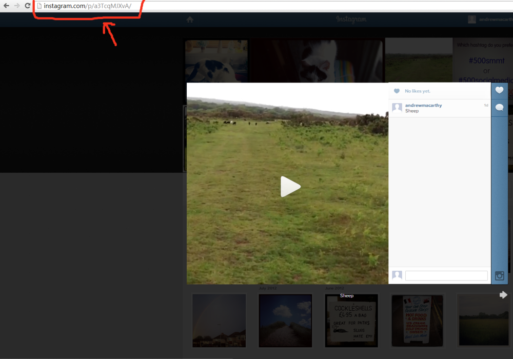 how-to-embed-an-instagram-video-on-blog-website-tutorial-2.PNG