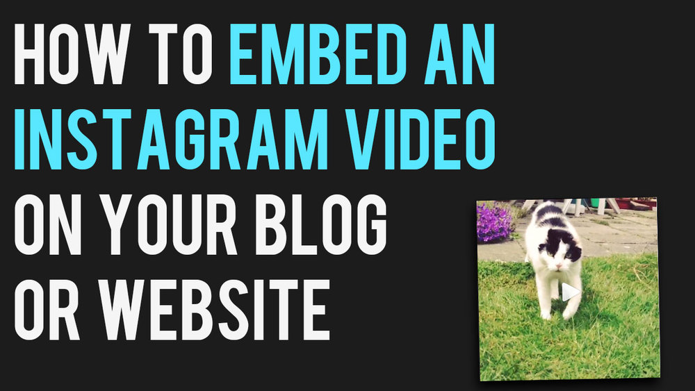 how-to-embed-an-instagram-video-on-blog-website-embed-code.jpg